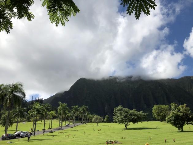 ハワイ ペット霊園3