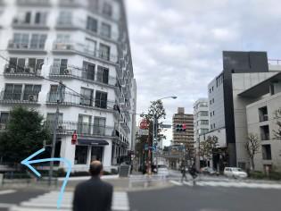 ディアペット東京本店
