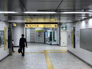 ディアペット東京本店明治神宮前3
