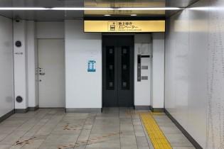 ディアペット東京本店明治神宮前4