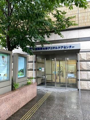 帝京科学大学付属動物病院2