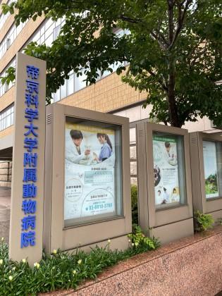 帝京科学大学付属動物病院